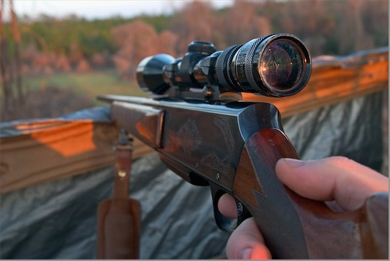 Rifle and Scope