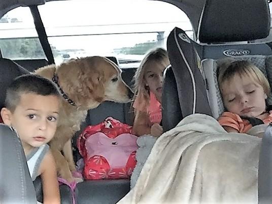 Stella and Kids Irma